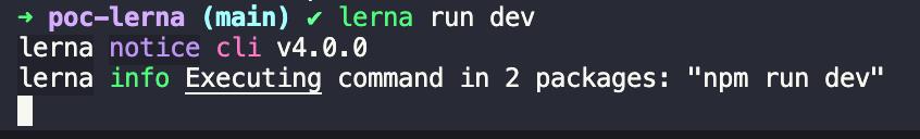 Retorno do comando lerna run dev no terminal