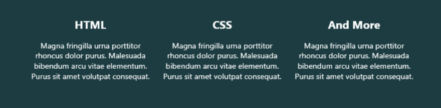 Zoomed in footer, implemented using flexbox columns