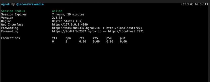 HTTPS public URL using ngrok
