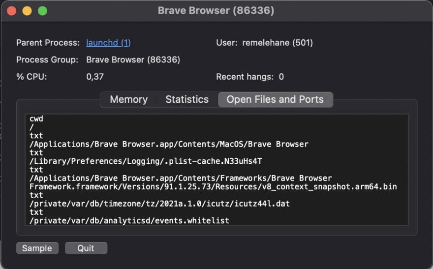 Brave processor details screenshot