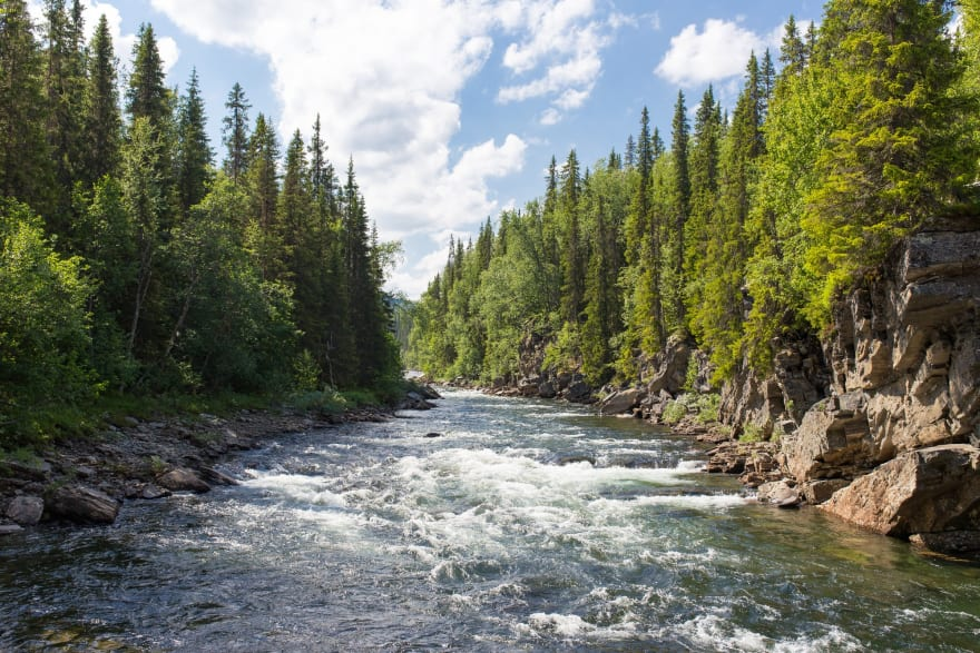 Into the Flow: Kotlin cold streams primer