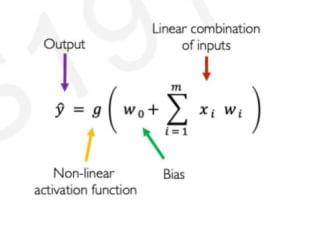 Neuron WOrking formula