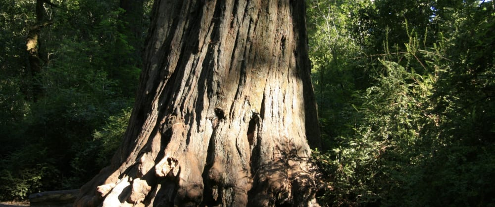 Cover image for I Wrote a Tree Control for Enormous Trees