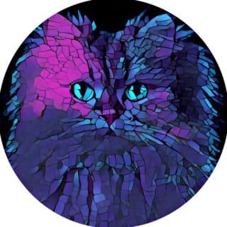 Sindre Sorhus profile picture