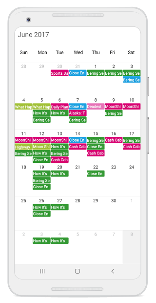 Scheduler loaded with appointments via web API service