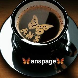 anspage profile