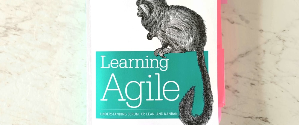 Cover image for 20 things I learned about Scrum from Learning Agile