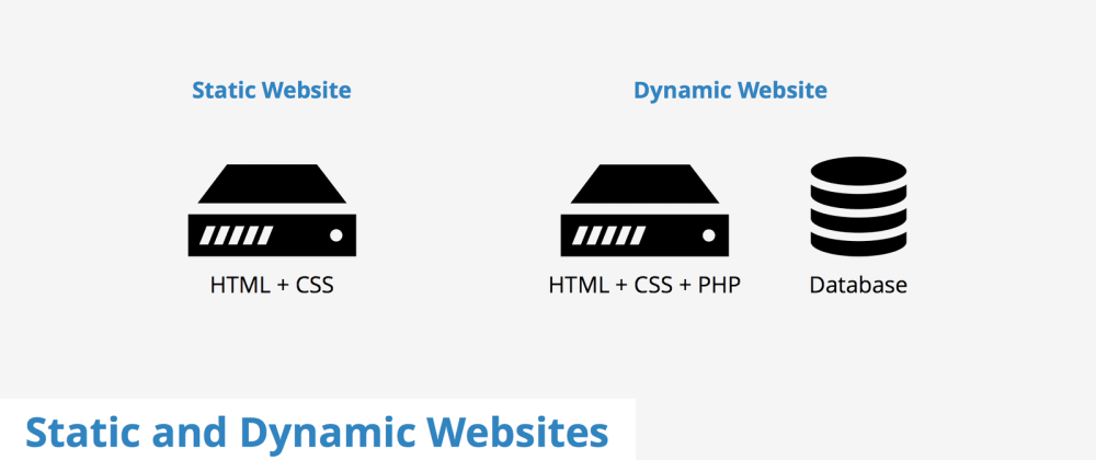 Cover image for Static vs dynamic websites: which to use?