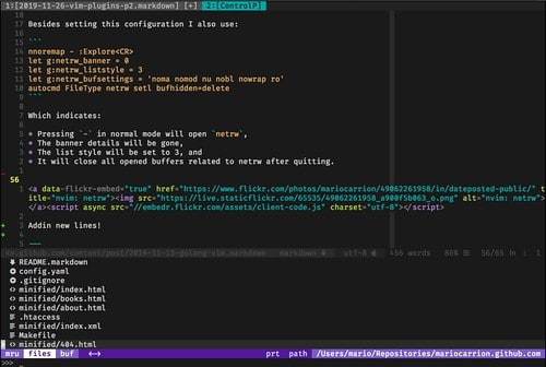 nvim look and feel plugins