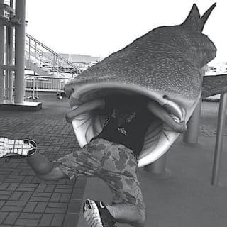 Shota Senga profile picture