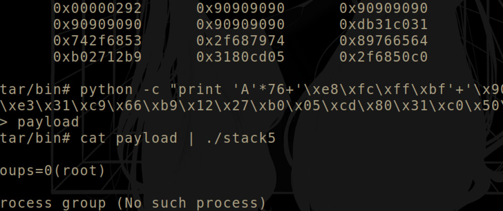 Cover image for Jump into shellcode (protostar - stack5)