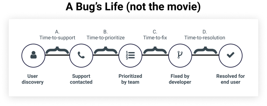 image showing the lifecycle of a bug