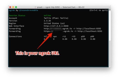 The ngrok dashboard. It shows the URL you can now use to tunnel traffic through to your locally running app.