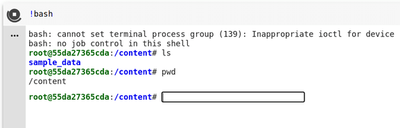 Using interactive shell in colab