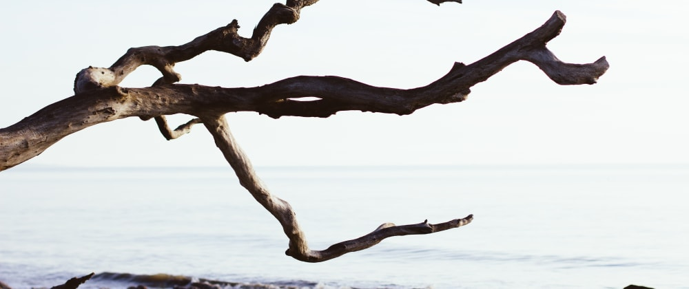 Cover image for Fuzzy branches: a brief example of a git custom command.