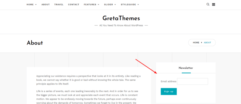 The form creat by MailChimp.