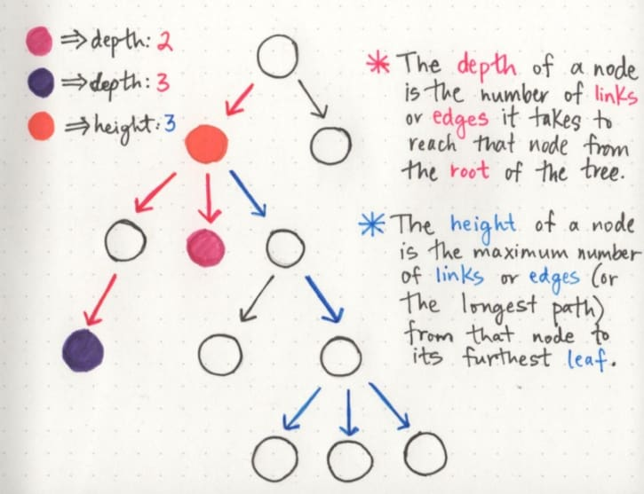 The depth and height of a node on a tree data structure