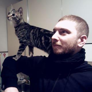 Domenico Gemoli profile picture