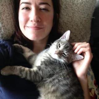 LizBaker profile picture