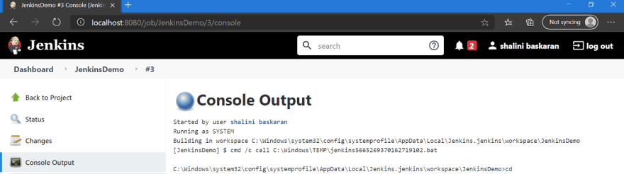 Jenkins Console Output