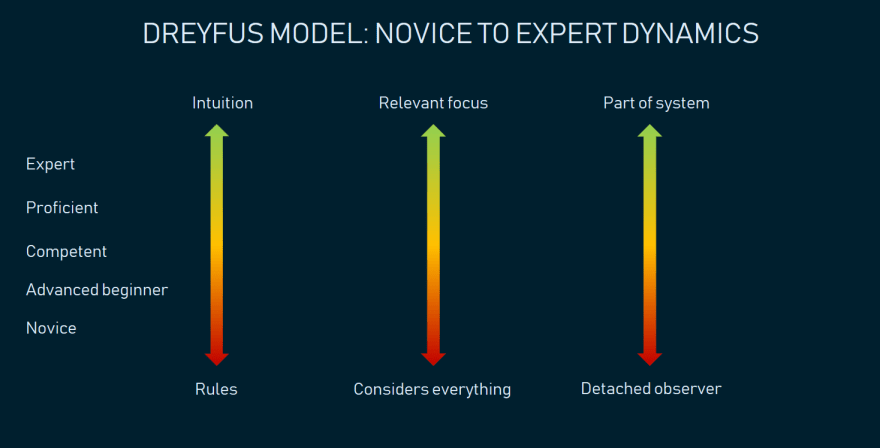 The five Dreyfus model stages illustrating the most important changes on the way from Novice to Expert