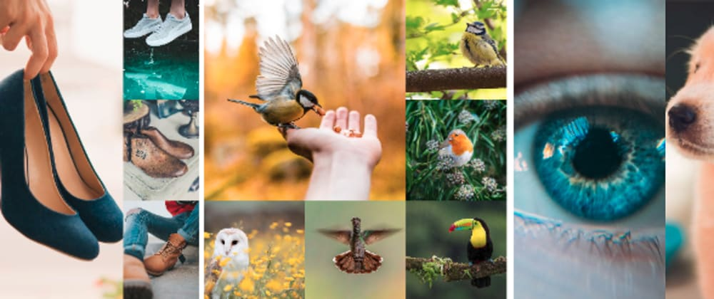 Cover image for Image Collage Widget
