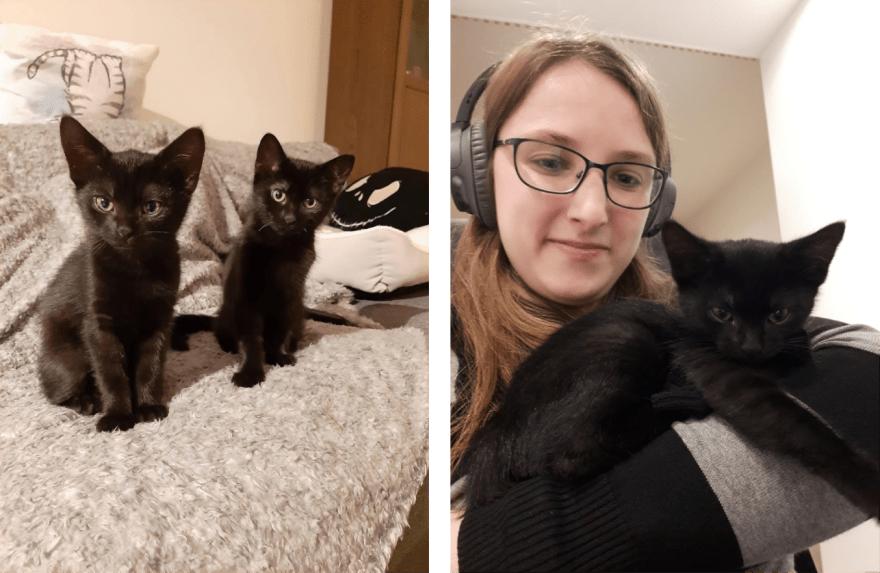 Pictures of Marijke and her 2 black kittens