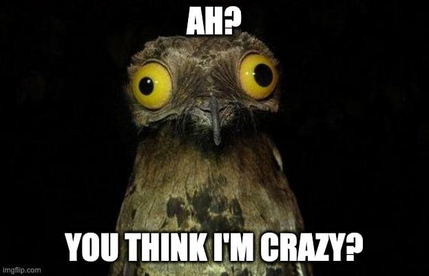 Crazy me?