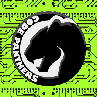 Code Panthers profile picture