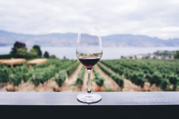 Regression from scratch - Wine quality prediction