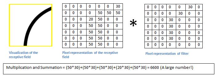 Comparação da matriz do filtro com a matriz gerada com a parte da imagem do rato