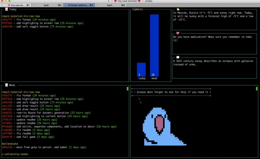 Can I see your terminal? - DEV Community 👩 💻👨 💻