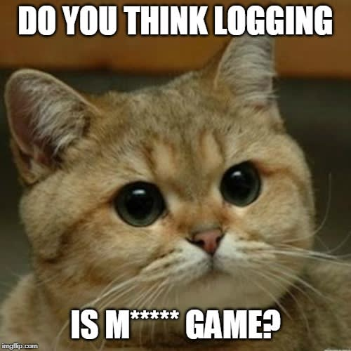 Do you think logging is a game?