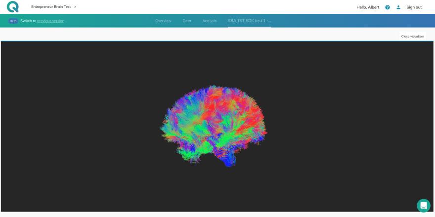 Brain Fibers Visualizer