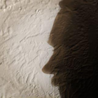 brandynfriedly profile