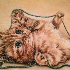 Kittenwithturquoiseyarn
