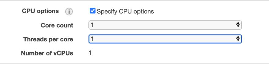CPU option