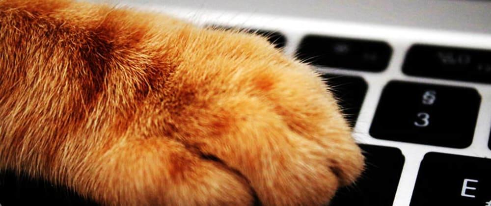 Cover image for Récupérer les informations saisies au clavier