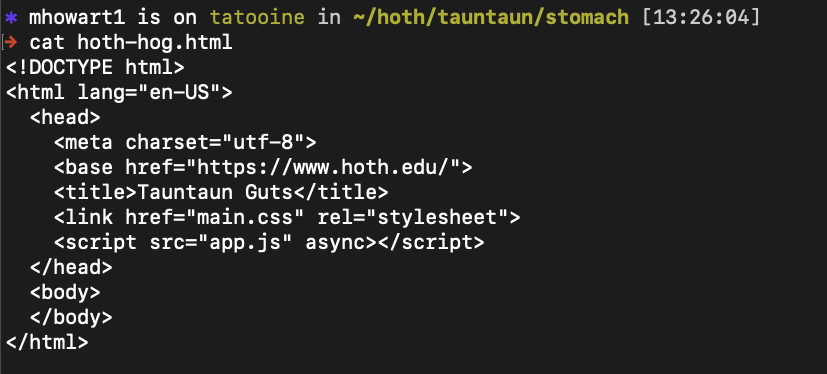 """Screenshot of output from cat command, a small html file printed to the terminal after running the """"cat"""" command"""