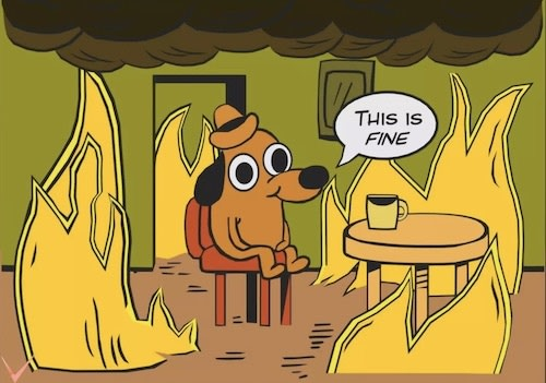 'This is fine' meme. A dog is drinking a coffee in a room full of flames and he is reassuring itself that everything is fine.