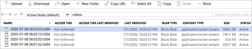 The files listed in the storage explorer