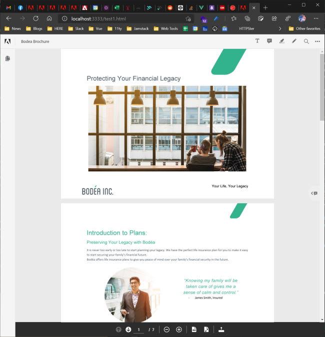 Screen shot of PDF Viewer