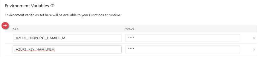 configure env variables