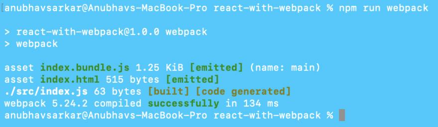 npm run webpack