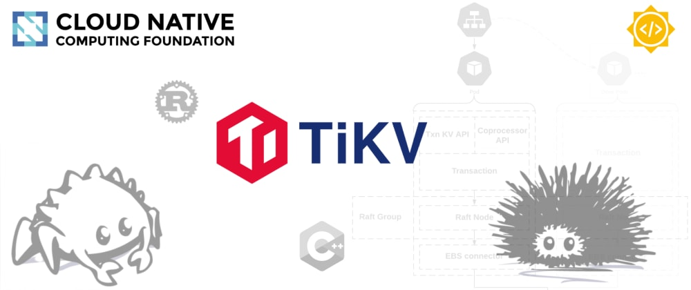 Cover image for A Summer of Code with TiKV