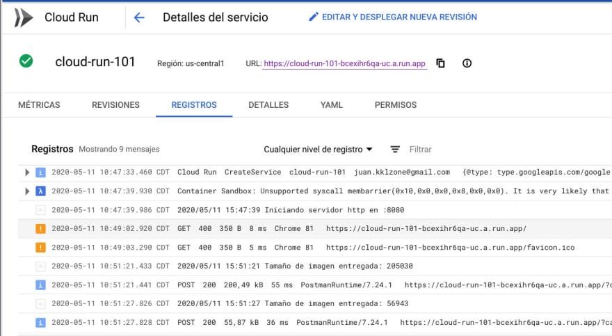 Los logs del servicio que se imprimen en la salida estándar se verán en este apartado