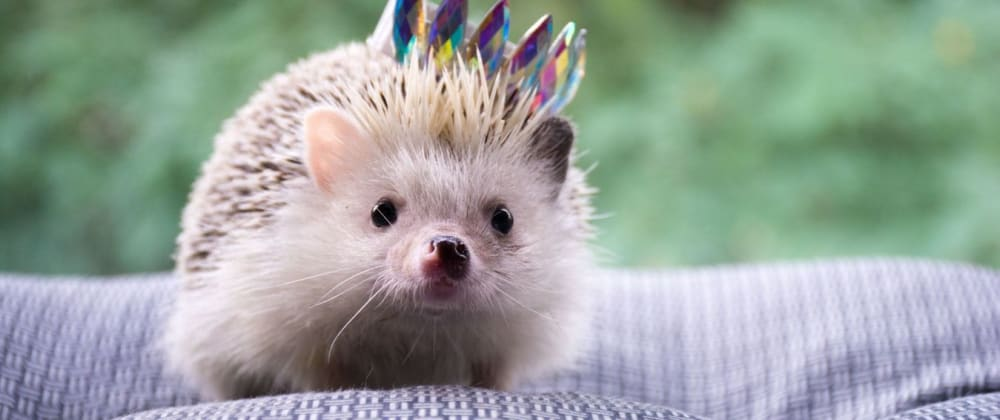 Cover image for Good testing practices with 🦔 Angular Testing Library
