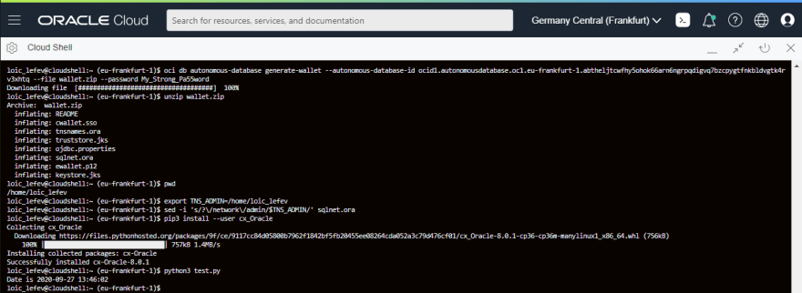 Oracle Cloud Shell running a python script that connects to an Always Free Autonomous Transaction Processing database.