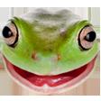 shardy613 avatar