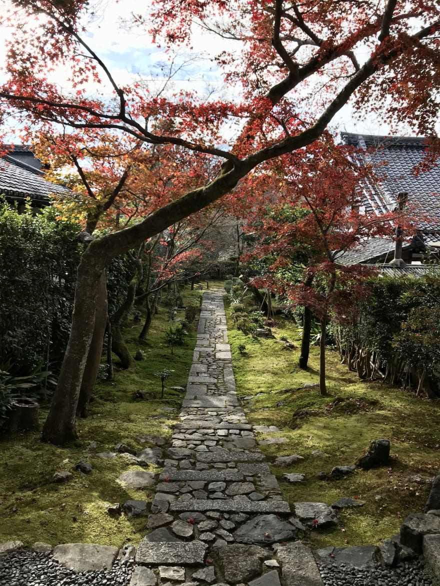 A photo of Seigen-in entrance garden in autumn